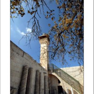 Al-Aqsa Library 1
